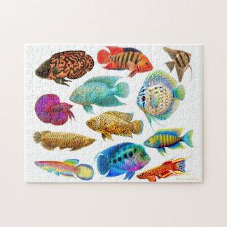 Rompecabezas tropical colorido de los pescados del