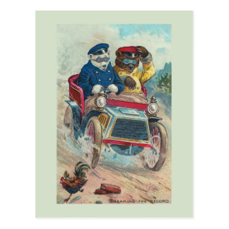 """Rompiendo"" la postal de registro del oso del vint"