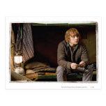 Ron Weasley 2 Postal