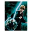 Ron Weasley and Lucius Malfoy print