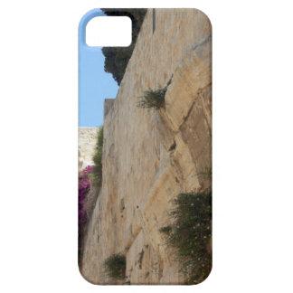 Ronbinson arch iPhone SE/5/5s case