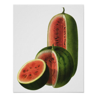 Ronda alta de las sandías del vintage, fruta del póster