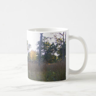 Rondeau Park in the Fall Classic White Coffee Mug