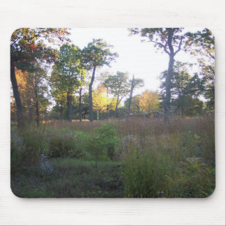 Rondeau Park in the Fall Mouse Mats
