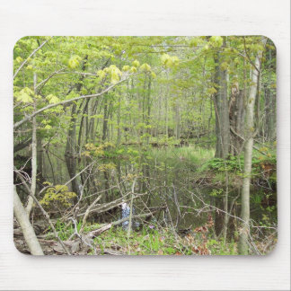 Rondeau Provincial Park, Ontario in May, 2006 Mouse Pad