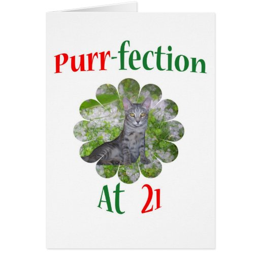 Ronroneo-fection 21 tarjeta de felicitación