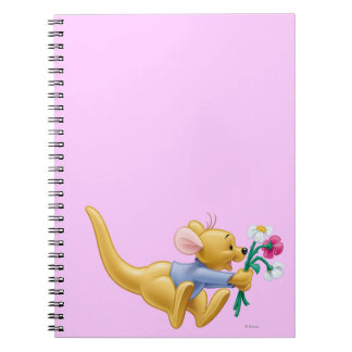 Roo 4 note book