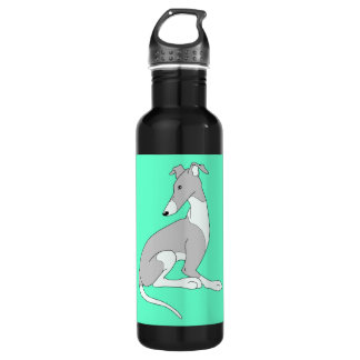 Roo Sitting (MINTY) Stainless Steel Water Bottle