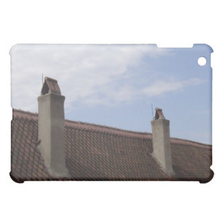 Roof Line Cover For The iPad Mini