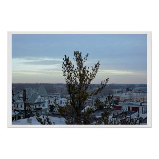 Rooftops with Tree Poster