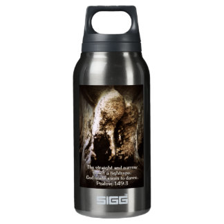 room to dance insulated water bottle