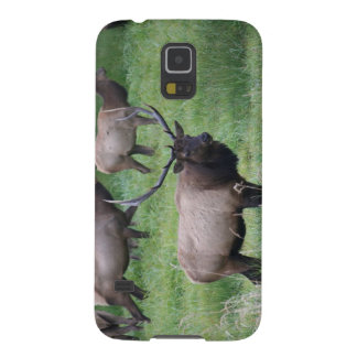Roosevelt Bull Elk and Herd Case For Galaxy S5