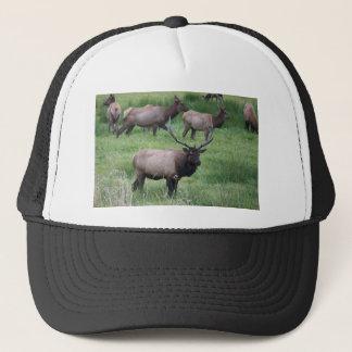 Roosevelt Bull Elk and Herd Trucker Hat