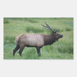 Roosevelt Bull Elk Rectangular Sticker