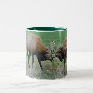 Roosevelt Elk Sparring Two-Tone Coffee Mug