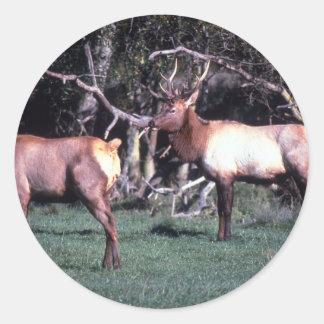 Roosevelt Elk Classic Round Sticker