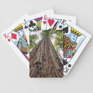 Roosevelt Grove Bicycle Playing Cards