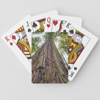 Roosevelt Grove Playing Cards