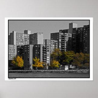 Roosevelt Island Autumn print