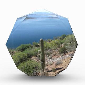 Roosevelt Lake Acrylic Award