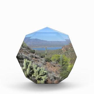 Roosevelt Lake From Tonto National Monument Award