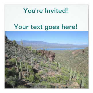 Roosevelt Lake View Tonto National Monument Card