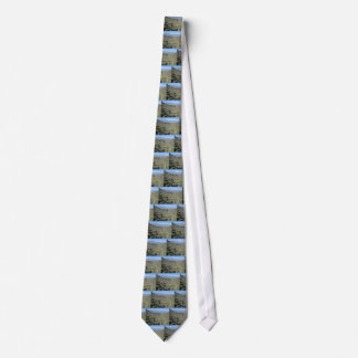 Roosevelt Lake View Tonto National Monument Tie