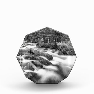 Roosevelt National Forest Stream Black and White Acrylic Award