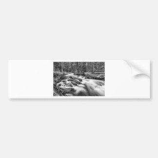 Roosevelt National Forest Stream Black and White Bumper Sticker
