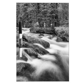 Roosevelt National Forest Stream Black and White Dry Erase Board