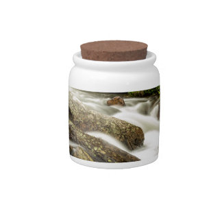 Roosevelt National Forest Stream Candy Dish