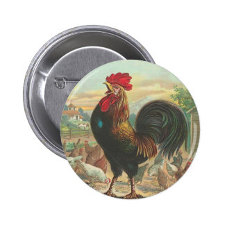 Rooster 2 Inch Round Button