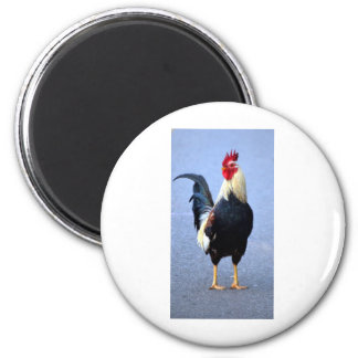 Rooster 2 Inch Round Magnet
