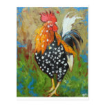 Rooster#485 Post Cards
