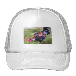 Rooster aceo Hat