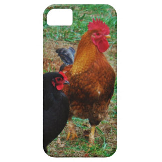 Rooster and Black Hen iPhone 5 Covers