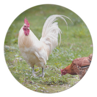 Rooster and hen melamine plate