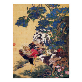 Rooster and Hen Postcard