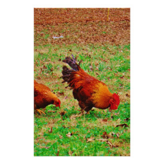 Rooster and Hen Stationery