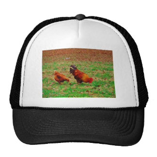 Rooster and Hen Trucker Hat