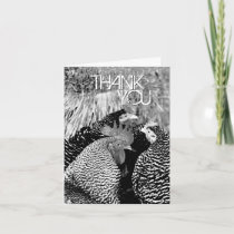 Rooster and Hens Country Wedding Thank You Cards