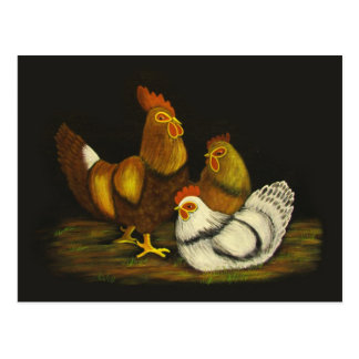 Rooster and Hens ~ postcard