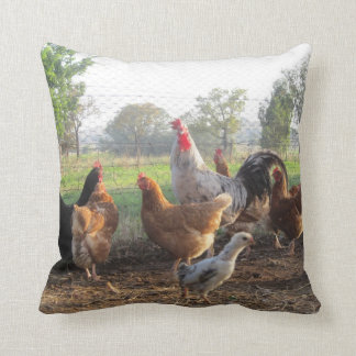 Rooster and his Hens MoJo Pillow