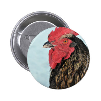Rooster Button