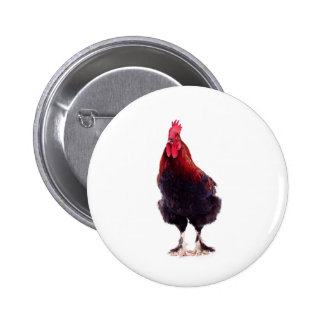 rooster buttons