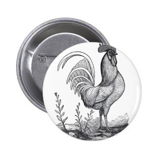 Rooster Pinback Button
