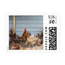 Rooster - Celebrate 2017 Year of the Rooster Postage