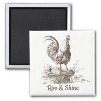 Rooster charming sepia tone illustration magnet