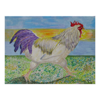 Rooster/Chicken Art Drawing - On the Run Print