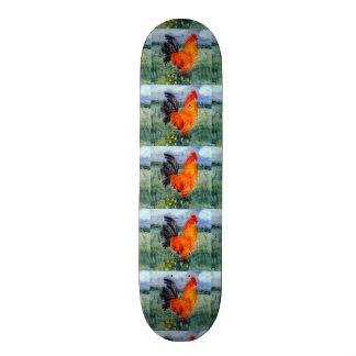 Rooster Chicken Art Skateboard Deck